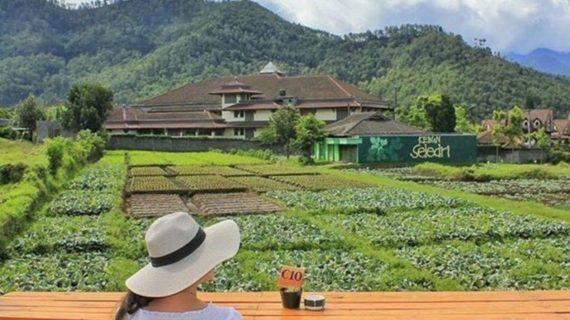 15 Tempat Hangout Anak Muda di Wisata Outbound Malang